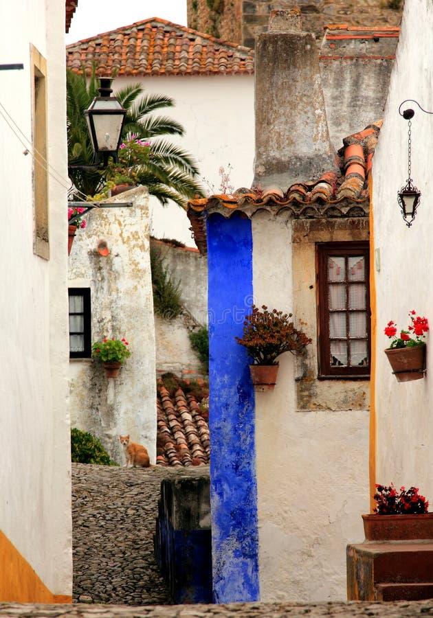 Schöne kleine cobblestoned Straße, Wände und Dächer auf verschiedenen Niveaus in Obidos, Portugal lizenzfreies stockfoto