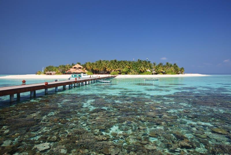 Schöne kleine Insel. Der Indische Ozean. Malediven. stockfoto