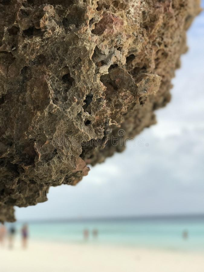 Schöne Koralle über Crystal Clear Blue Waters stockbild