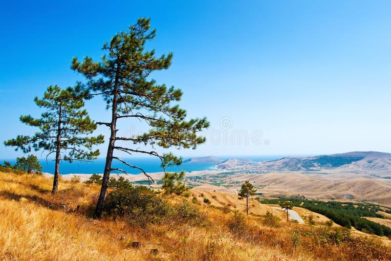 Schöne Krim-Landschaft stockbild