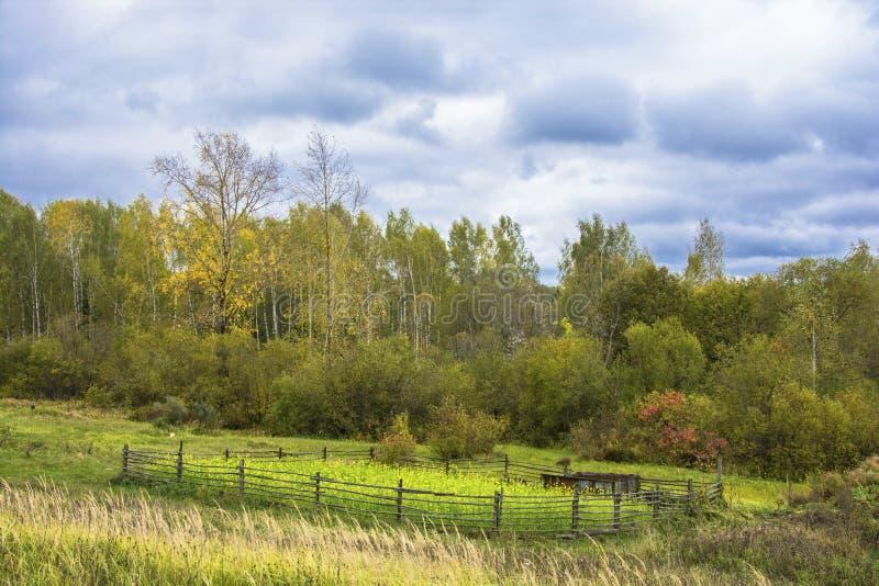 Schöne ländliche Herbstlandschaft mit einem bewölkten Himmel, Russland stockfotografie