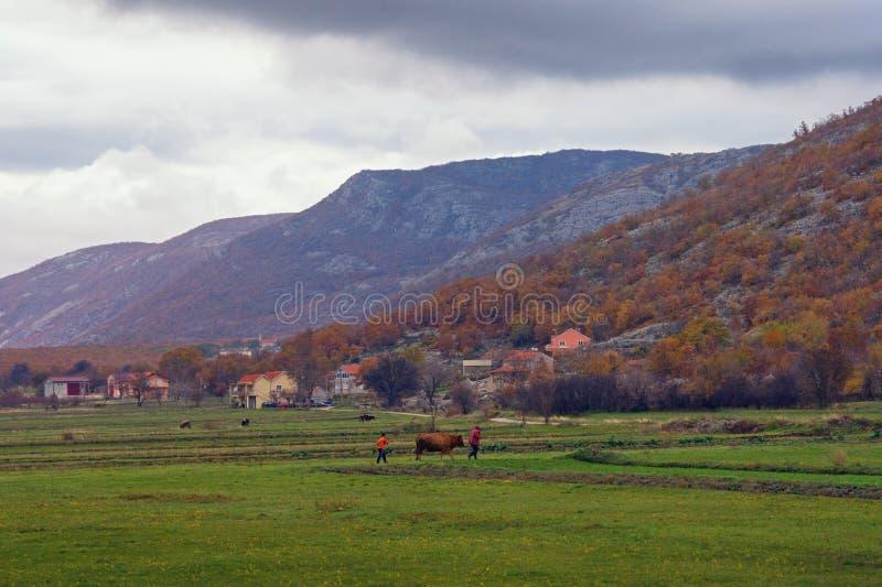 Schöne ländliche Landschaft mit grünem Feld und kleinem Dorf am bewölkten Herbsttag Schattierte Entlastungskarte mit HauptStadtge lizenzfreies stockbild