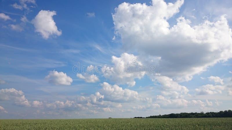 Schöne Landschaft stockbilder