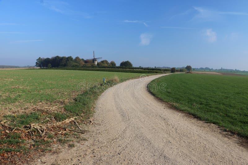 Schöne Landschaft in den Niederlanden lizenzfreie stockbilder