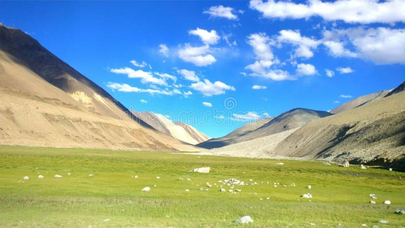 Schöne Landschaft der Sommernatur mit Lichtung lizenzfreie stockfotos
