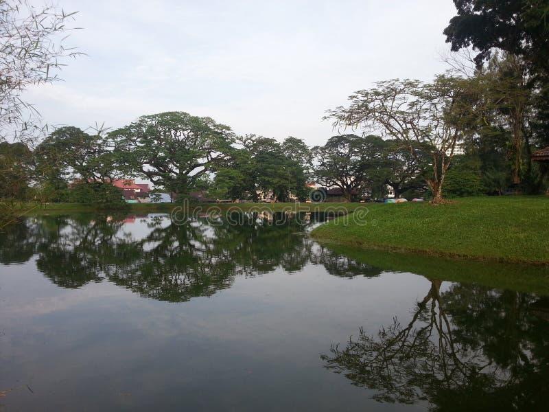 Schöne Landschaft durch den Fluss im Park lizenzfreies stockfoto