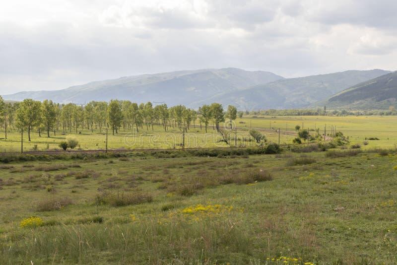 Schöne Landschaft, grüne Bäume und Feld mit gelben Blumen, bewölkter Himmel unter den Bergen, entlang dem Feld ist Bahnlinie stockfotografie