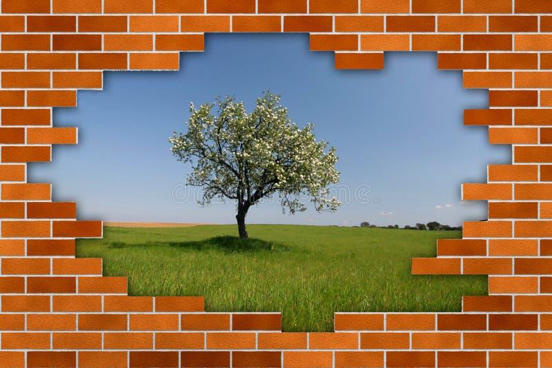Schöne Landschaft hinter unterbrochener Backsteinmauer lizenzfreie stockfotografie