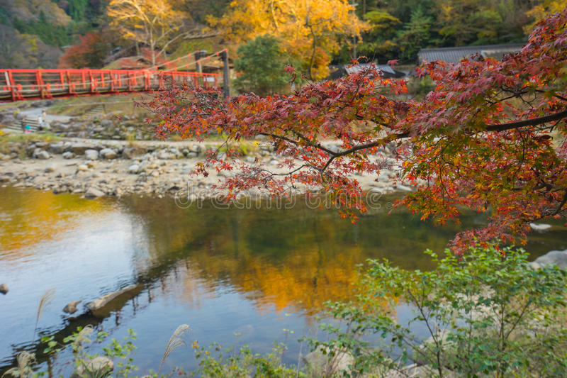 Schöne Landschaft im Herbst bei Korankei, Japan lizenzfreie stockfotos