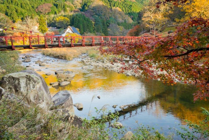 Schöne Landschaft im Herbst bei Korankei, Japan stockfotografie