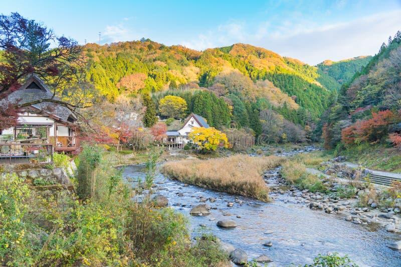 Schöne Landschaft im Herbst bei Korankei, Japan lizenzfreie stockfotografie