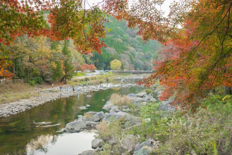 Schöne Landschaft im Herbst bei Korankei, Japan lizenzfreie stockbilder