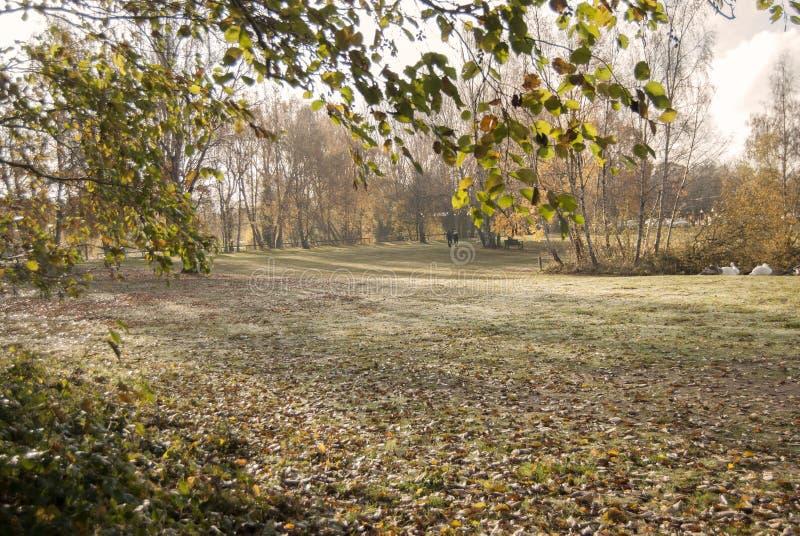 Schöne Landschaft im Herbst mit einem Paar, das den Hund am Waldwasser, Grantham Großbritannien geht lizenzfreies stockfoto