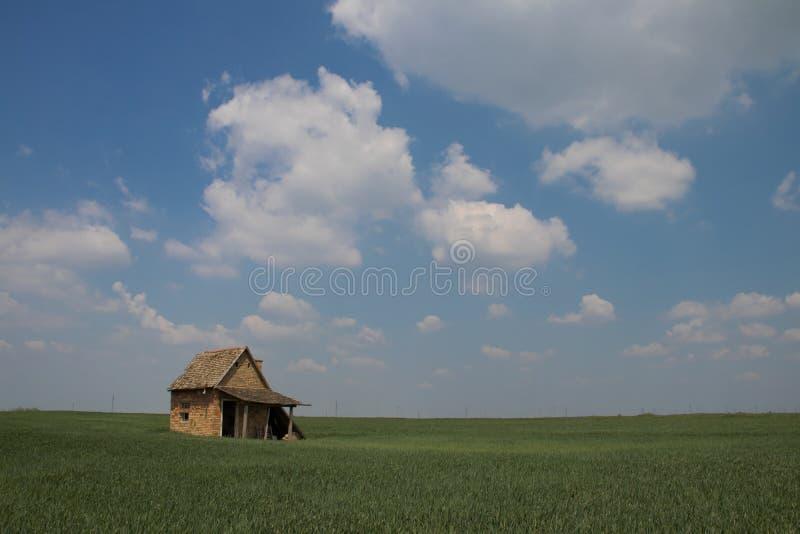 Schöne Landschaft im Vojvodina Serbien, im blauen Himmel und im grünen Gras mit kleinem rustikalem Haus stockbild