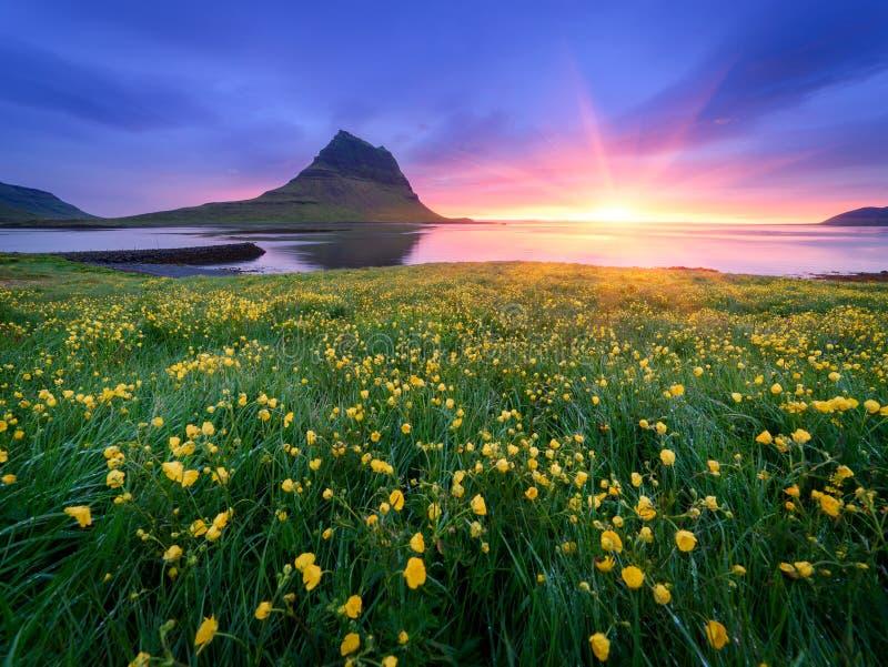Schöne Landschaft mit Berg und Ozean in Island stockfotos