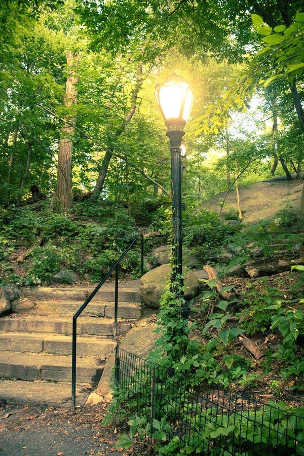 Schöne Landschaft vom Central Park, New York City lizenzfreie stockbilder