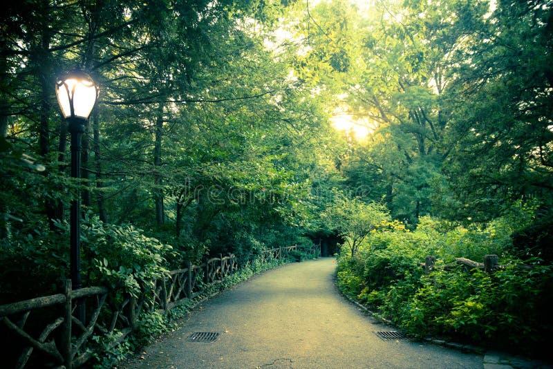 Schöne Landschaft vom Central Park, New York City stockbilder
