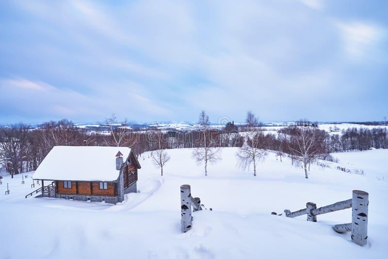 Schöne Landschaft von Biei-Feldern im Winter vom Hokusei-Hügelobservatorium in Biei-Stadt lizenzfreie stockfotos