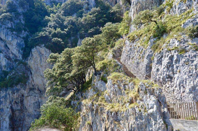 Schöne Landschaft von enormen Klippen stockbilder
