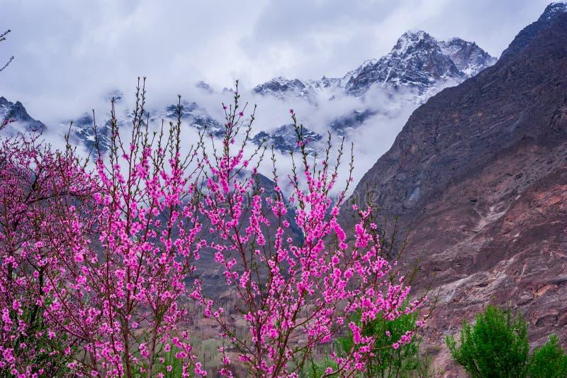 Schöne Landschaft von Hunza-Tal in der Herbstsaison stockbild