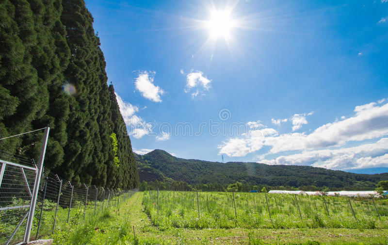 Schöne Landschaft von Takayama Mur am sonnigen Sommer- oder Frühlingstag und blauer Himmel in Kamitakai-Bezirk in Nordost-Nagano stockbild