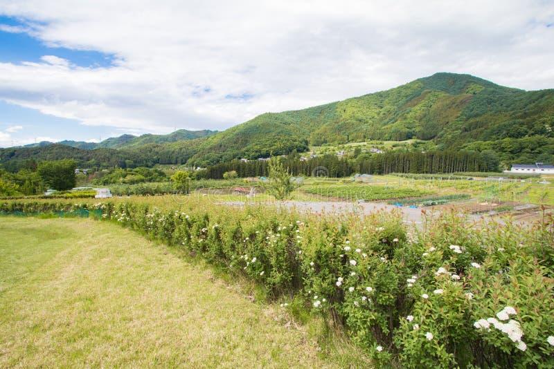 Schöne Landschaft von Takayama Mur am sonnigen Sommer- oder Frühlingstag und blauer Himmel in Kamitakai-Bezirk in Nordost-Nagano stockfoto