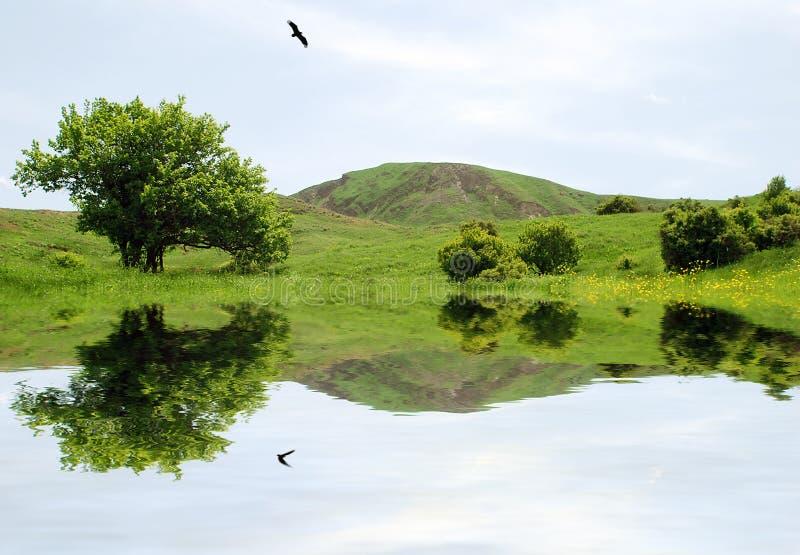 Schöne Landschaftsabbildung lizenzfreie stockfotografie