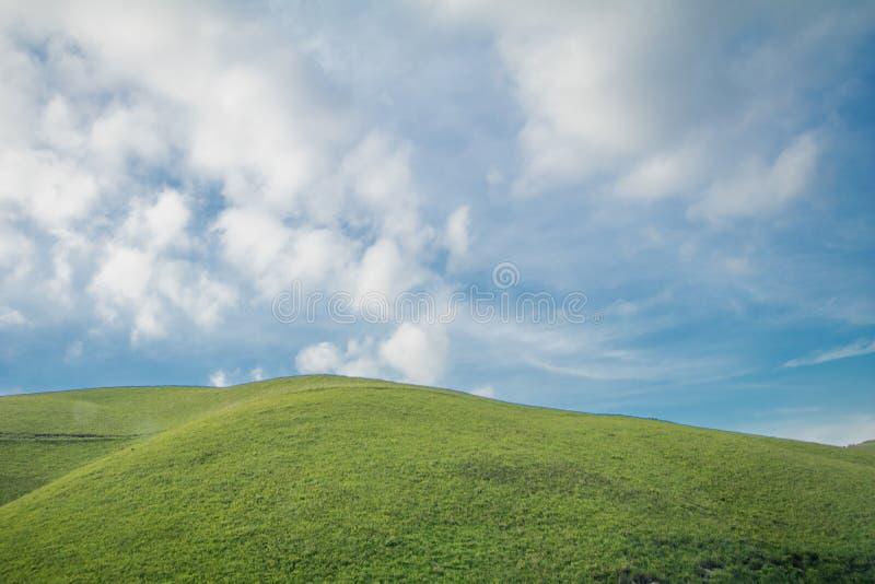 Schöne Landschaftsansicht des grünen Grases mit blauer Himmel backgr stockfoto
