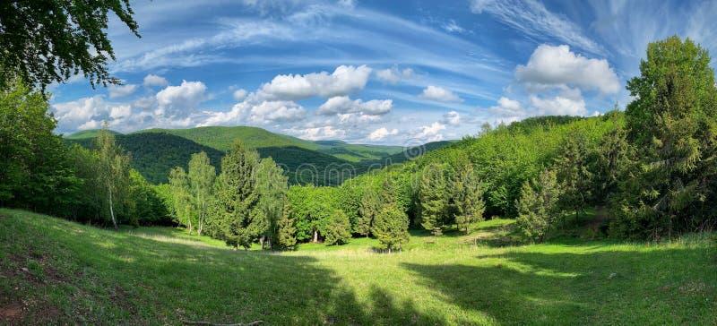 Schöne Landschaftsansicht mit blauer und grüner Harmonie lizenzfreies stockbild
