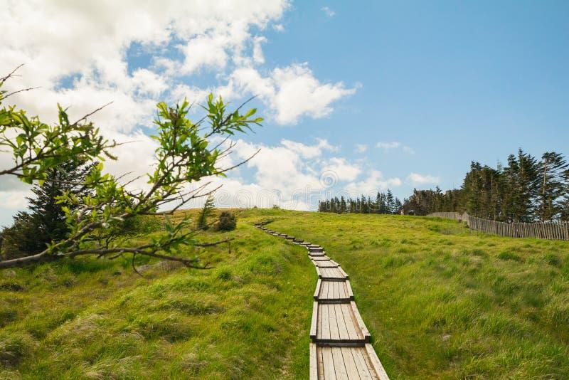 Schöne Landschaftsansicht und hölzerne Treppe von Utsukushigahara PA lizenzfreie stockfotografie