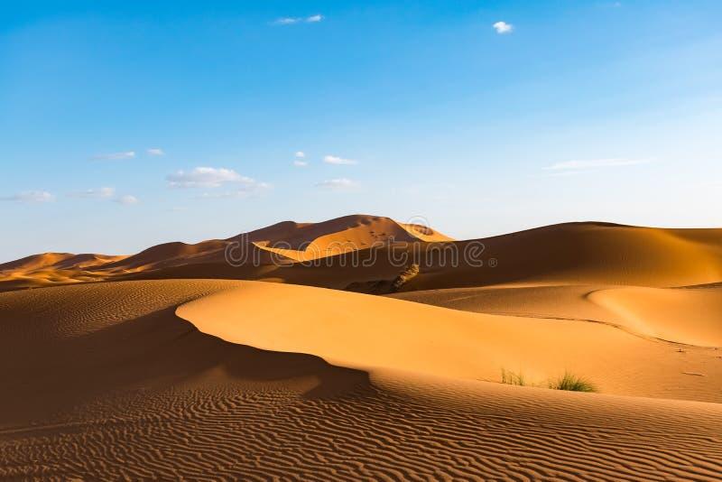 Schöne Landschaftsansicht von Dünen Erg Chebbi, Sahara Desert, Merzouga, Marokko stockfotografie