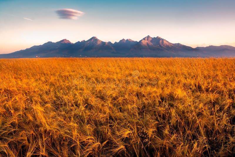 Schöne Landschaftsansicht von hohen Tatras-Bergen bei Sonnenaufgang, Slowakei stockbilder