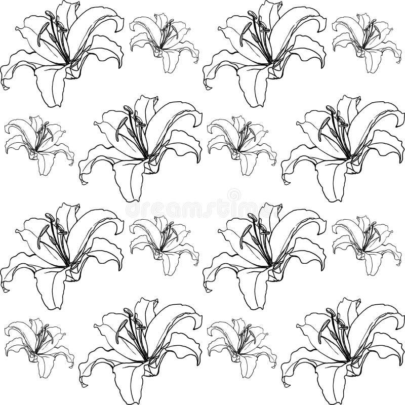 Schöne Lilien Blüht schwarz-weißes, Zusammenfassung lizenzfreies stockfoto