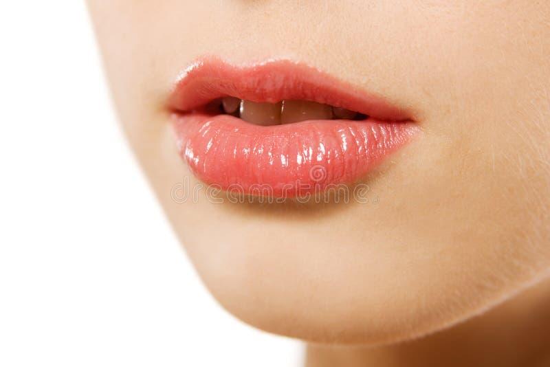 Schöne Lippen stockbilder