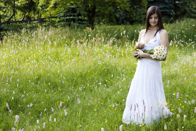 Schöne Mädchensammelnblumen in einer Wiese lizenzfreie stockfotos