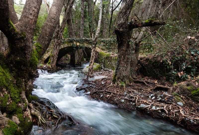 Schöne, mittelalterliche Steinbrücke mit einem Fluss voller Wasser stockbilder