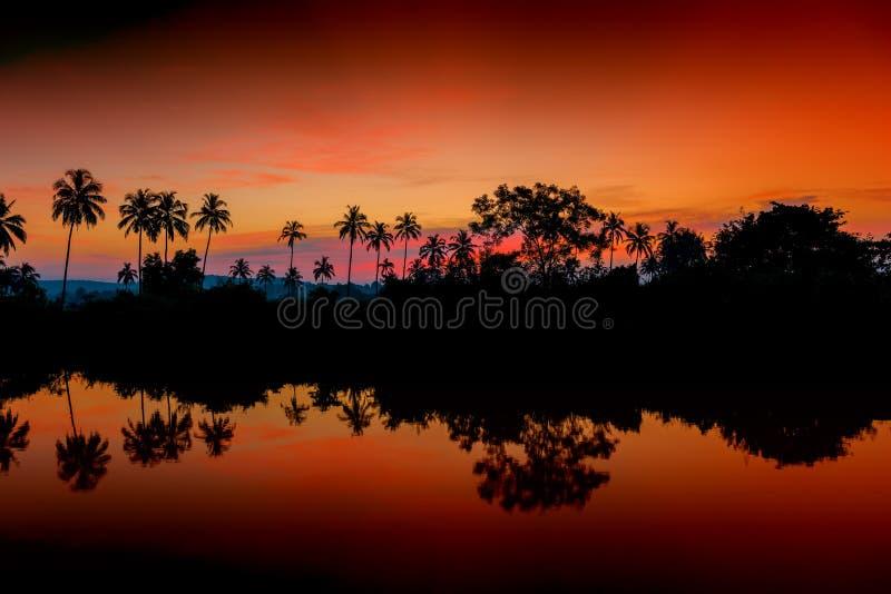 Schöne Morgen-Landschaft stockfoto