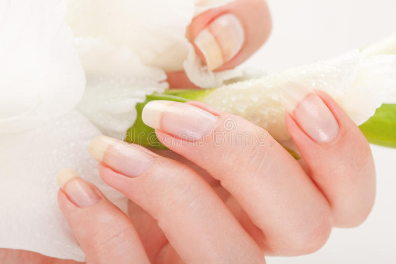 Schöne Nägel und Finger stockfoto
