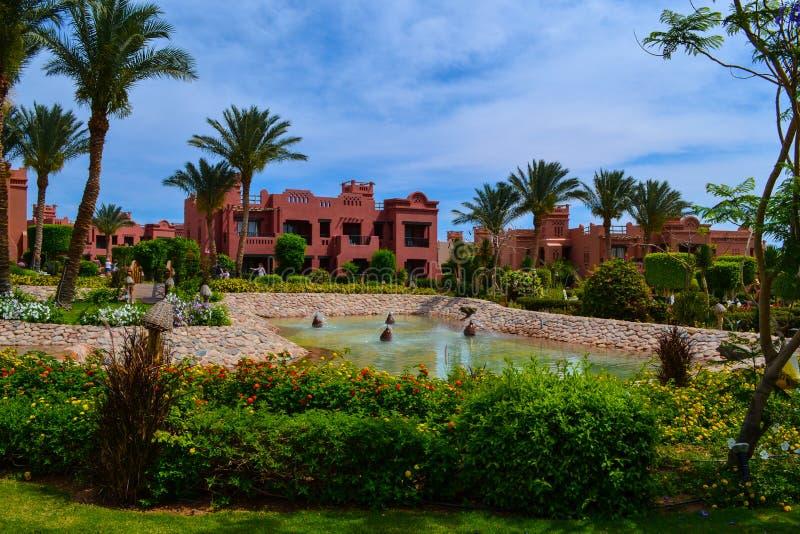 Schöne Natur, Landschaft, Rotes Meer, Ägypten lizenzfreie stockbilder