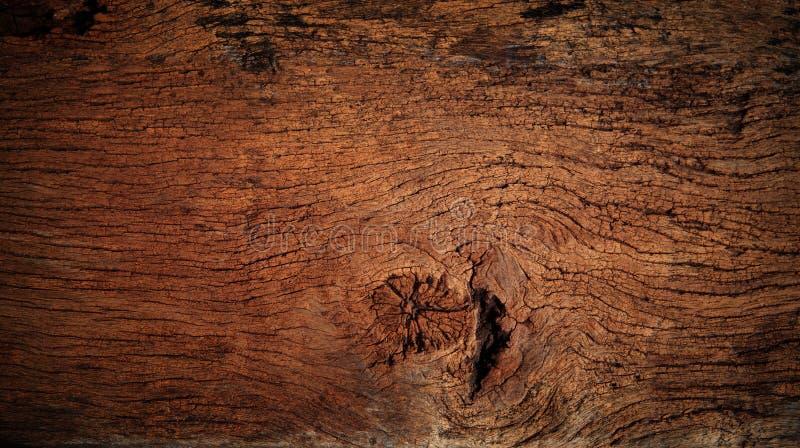 Schöne Naturbeschaffenheit des hölzernen Gebrauches der Barke als natürliches backgroun lizenzfreies stockbild