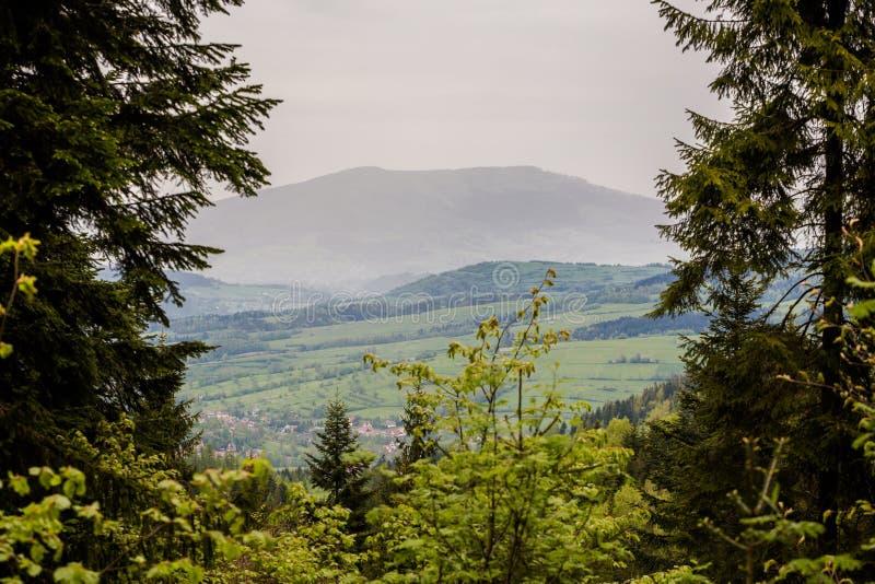 Schöne, nebelige Bergwelt stockbilder