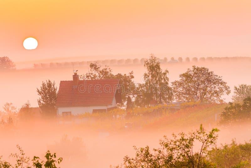 Schöne nebelige Landschaft während des überraschenden Sonnenaufgangs mit Haus, Bäumen und Weinbergen Süd-Moray, Tschechische Repu stockfotos