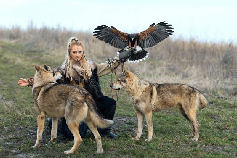 Schöne Nordkriegersfrau in Wikinger-Kleidung mit Wölfen und Harris Hawk Parabuteo-unicinctus lizenzfreie stockfotos