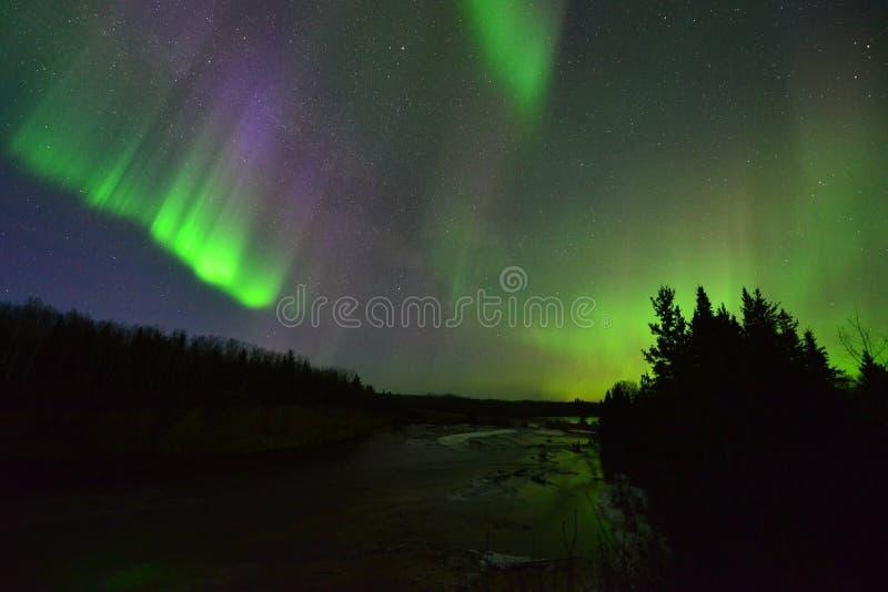 Schöne Nordlichter stockfotografie