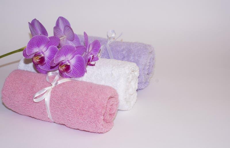 Schöne Orchidee auf farbigen gerollten Tüchern auf weißem Hintergrund lizenzfreie stockbilder