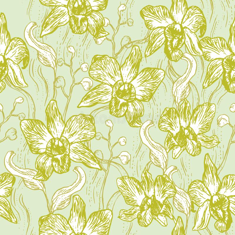 Schöne Orchidee Hand gezeichneter Satz auf nahtlosem Muster der hellblauen weißen Konturn-Skizze des Hintergrundolivgrünrosas, Ka stock abbildung
