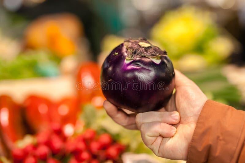 Schöne organische Aubergine angeboten für Verkauf am lokalen Markt des Landwirts lizenzfreies stockfoto