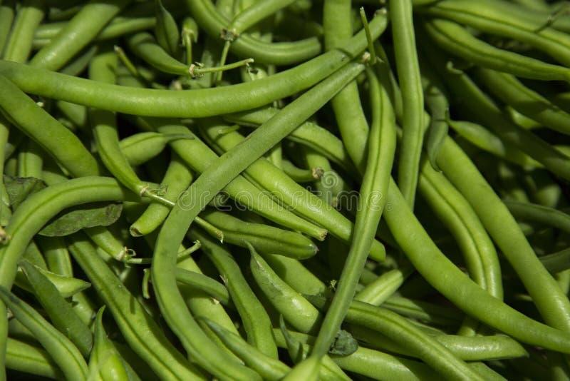 Schöne organische grüne Bohnen am Landwirtmarkt lizenzfreie stockfotos