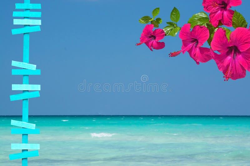 Schöne Ozeanlandschaft mit Seehimmel und Horizont und roter Hibiscus blüht lizenzfreie stockfotografie