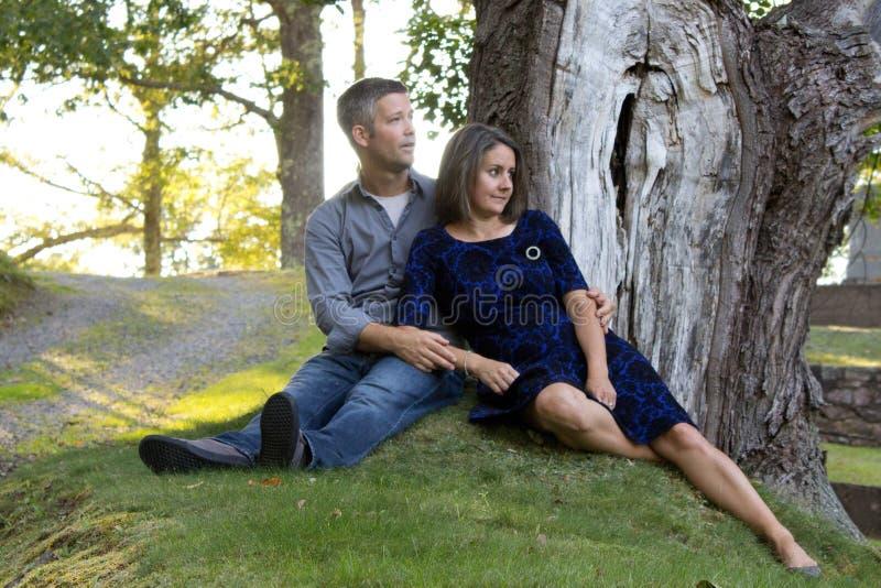 Schöne Paare unter Baum stockbild